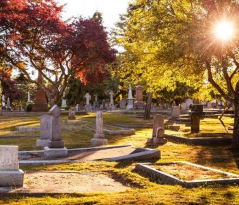 memorial costs and pricing